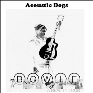 David Bowie Acoustic Dogs (compilation of Reality promos and rehearsals) - SQ 9