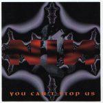 David Bowie 1995-10-09 Atlanta ,Lakewood Amphitheatre – You Can't Stop Us – (NIN NIN&Bowie) – SQ 8+