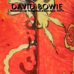 David Bowie 1973-06-22 Birmingham ,Town Hall - Birmingham Town Hall 22nd June 1973 - (Remaster) - SQ -6