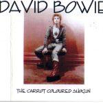 David Bowie 1973-04-20 Tokyo ,Shinjuku Koseinenkin Kaikan Public - The Carrot Coloured Shogun - SQ -7