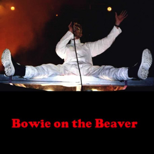David Bowie 1997-06-08 Offenbach ,Bieberer Berg Stadion - Bowie On The Beaver - (off Master) - SQ 8+