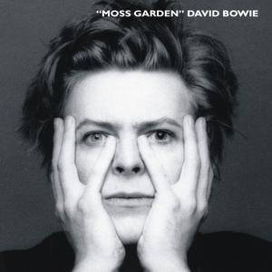 David Bowie 1978-05-09 New York ,Madison Square Garden - Moss Garden - SQ 7,5