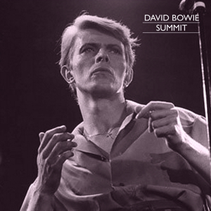David Bowie 1978-04-09 Houston ,The Summit - Summit - SQ 8,5