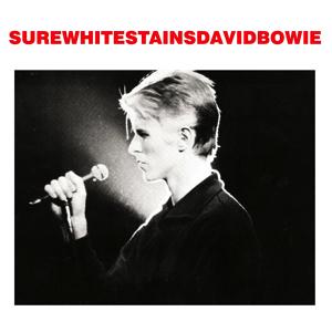David Bowie 1976-05-18 Paris ,Pavillion de Paris - Sure White Stains - (Diedrich) - SQ 7,5