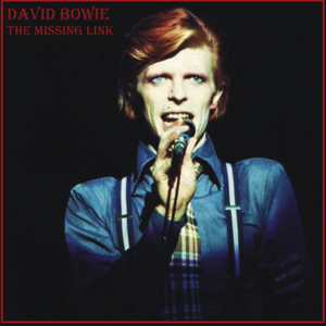 David Bowie 1974-10-16 Detroit ,Michigan Palace - Missing Link - SQ 7