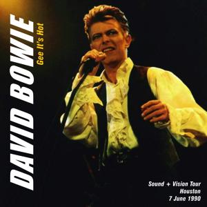 David bowie 1990-06-07 Houston ,Woodland Pavilion - Gee It's Hot - SQ -9