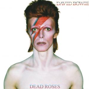 David Bowie 1973-04-12 Nagoya ,Japan ,Kokusai Tenji Kaikan - Dead Roses - -- SQ 7,5--