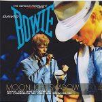 David Bowie 1983-10-30 Osaka ,Expo Memorial Park (a part of the Moonlight Shadow) - SQ 8