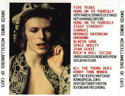 david-bowie-Miscellaneous-Of-Cats-back
