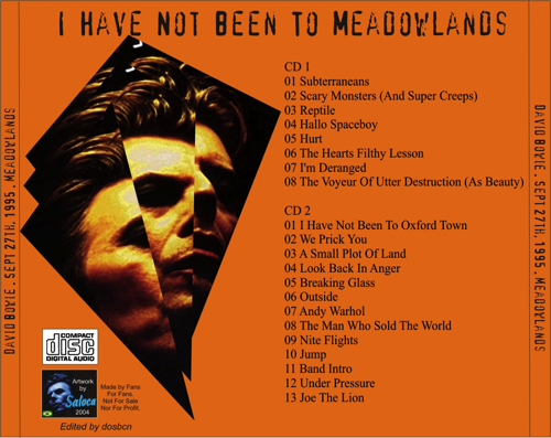 david-bowie-i-have-not-been-to-meadowlands-3