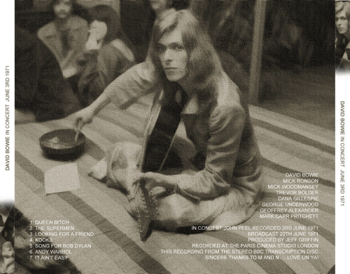 david-bowie-in-concert-back
