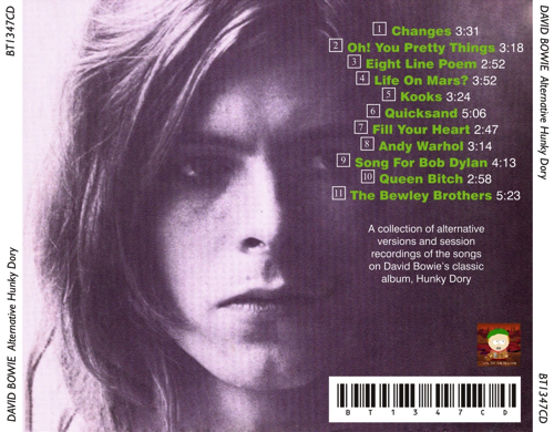 david-alternative-HUNKY-DORY-2