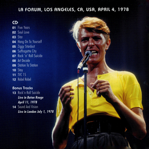 david-bowie-STARDUST-OVER-LOS-ANGELES-BACK-3