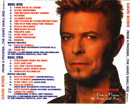 david-bowie-from-phoenix...The-ashes-shall-rise-back
