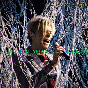 David Bowie 2003-10-18 Frankfurt ,Festhalle Frankfurt - Marginally Rock - (Matrix) - SQ 8+