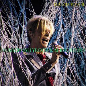 David Bowie 2003-10-18 Frankfurt ,Festhalle Frankfurt - Marginally Rock - (Matrix) - SQ 8+