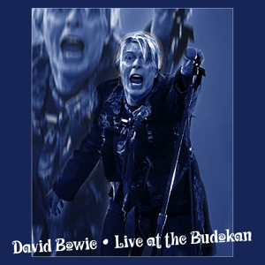 David Bowie 2004-03-09 Tokyo ,Nippon Budokan Hall - Live At The Budokan - SG -9
