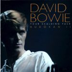 David Bowie 1978-12-12 Tokyo ,Nihon Budokan Hal - Your Scalding Face - SQ -9