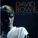 David Bowie 1978-12-12 Tokyo ,Nihon Budokan Hal - Your Scalding Face - SQ -9