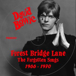 ldavid-bowie-forest-bridge-lane-label