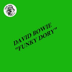 David Bowie 1974-11-18 Philadelphia ,Spectrum Theatre - Funky Dory - (Part one) (Vinyl) - SQ 7,5