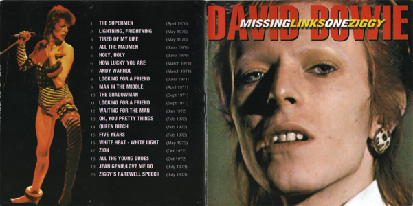 missing-links-one-ziggy-booklet-cover