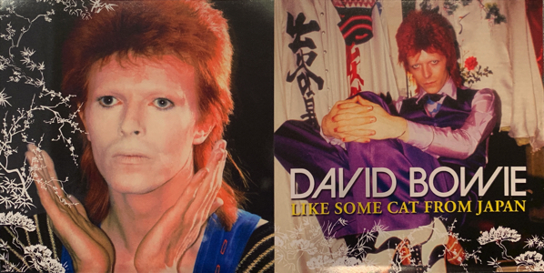 """david-bowie-like-some-cat-from-japan-0"""