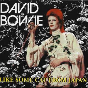 David Bowie 1973-04-XX Tokyo ,Shinjuku Koseinenkin Kaikan Public Hall - Like Some Cat From Japan - SQ 7,5