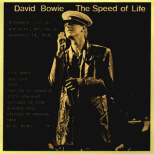 David Bowie 1978-11-11 Adelaide ,Oval Cricket Ground - Speed Of Life (3) - (Vinyl) (Vocal Monitor Board) - SQ 8